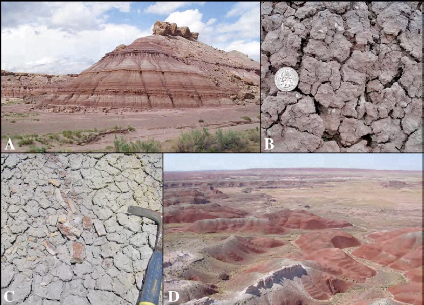 Colorado Plateau Drilling Project